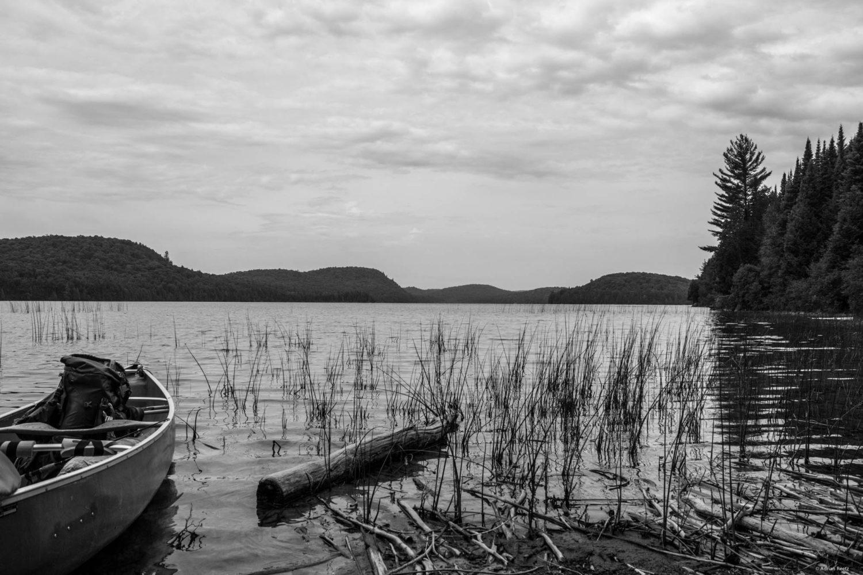 Biggar Lake